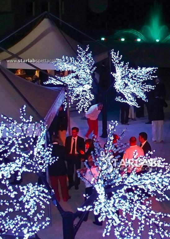 alberi luminosi e fontane danzanti
